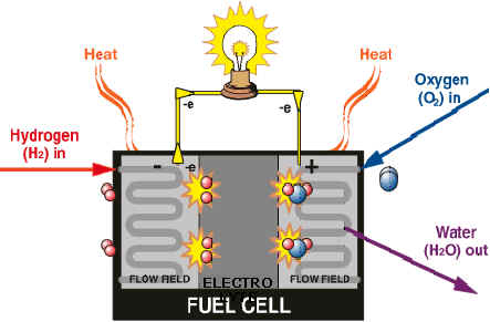 the fuel cell essay